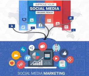 Why Social Media Marketing Dubai Is Important for SEO-WhitehatsMedia