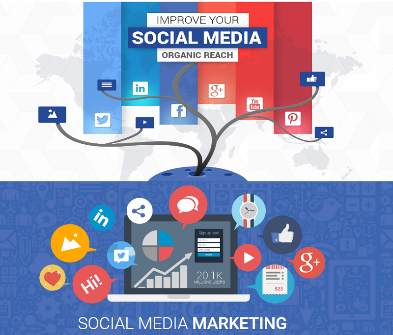 Why Social Media Marketing Dubai Is Important for SEO-WhitehatsMedia